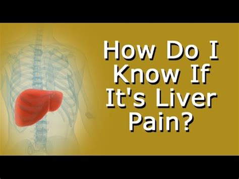 How Do I Know If It's Liver Pain? Youtube