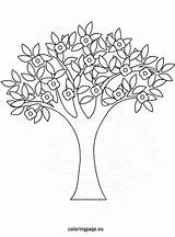 Coloring Tree Spring Pages Trees Template Flower Printable Drawing Print Painting Blossom Coloringpage Eu Apple Blooming Pattern Nature sketch template