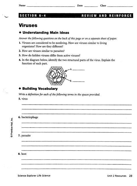 Worksheets Bacteria And Viruses Worksheet Worksheets Viruses Worksheet Laurenpsyk Free And