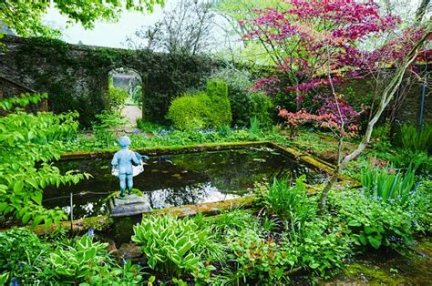 Give Your Garden A Touch Of Class With A Lovely Pond