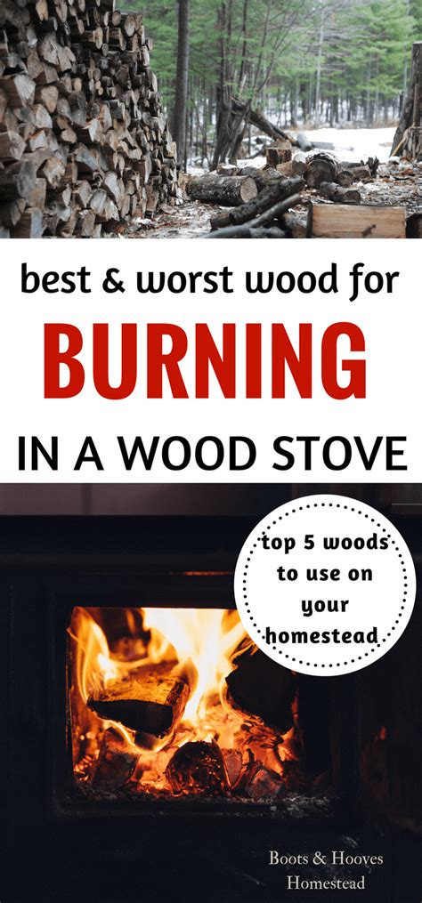 best wood to burn best wood to burn in a wood stove boots hooves homestead