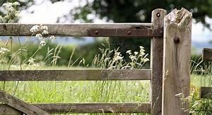 Idee Cloture Jardin : s paration jardin id es de cl tures haies et brise vue ~ Melissatoandfro.com Idées de Décoration