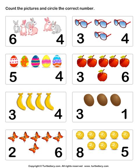 Count And Identify Number Of Objects Worksheet  Turtle Diary