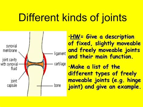 Different Kinds Of by L10a Different Kinds Of Joints