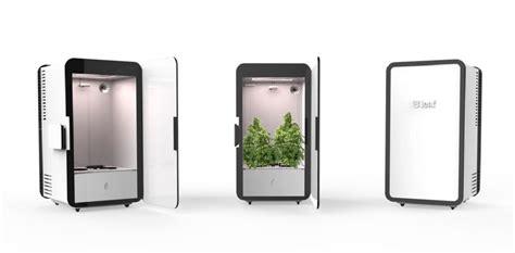 un placard connect 233 pour faire pousser du cannabis buzz