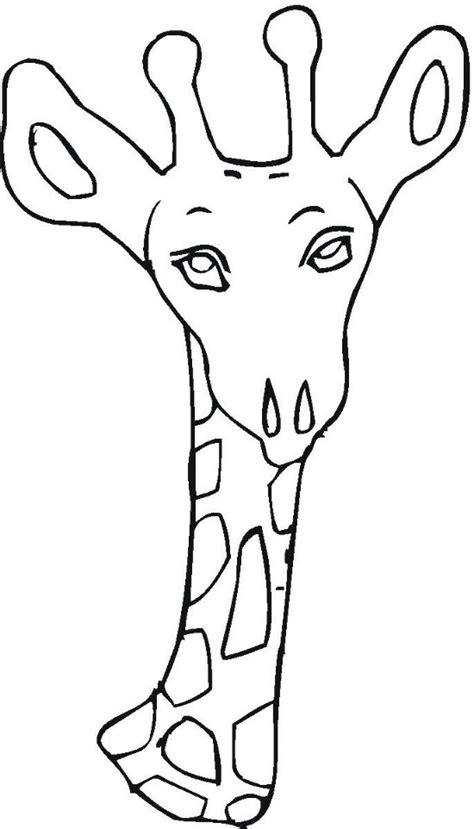 zoo coloring pages  kids updated