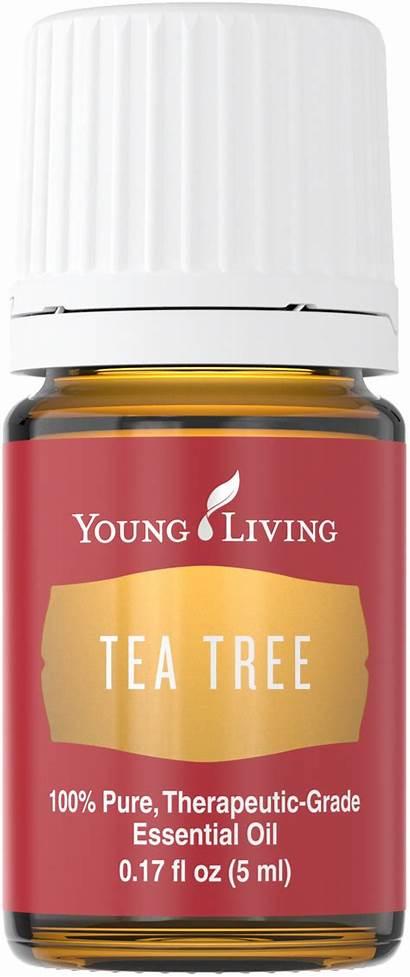 Tea Tree Oil Living 5ml Reasons Always