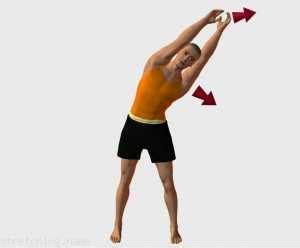 pieds bureau exercicesdetirement com intercostaux