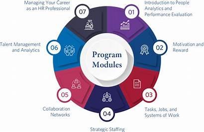 Hr Management Analytics Module Modules Program Programs
