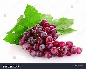Pink Grape Isolated On White Stock Photo 80969065 ...