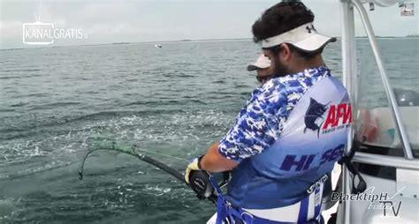 grouper goliath rod custom snaps