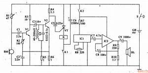Electronic Bird Repeller  4  - Automotive Circuit - Circuit Diagram
