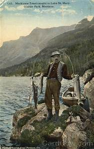 Fishing  Mackinaw Trout Caught In Lake St  Mary Glacier