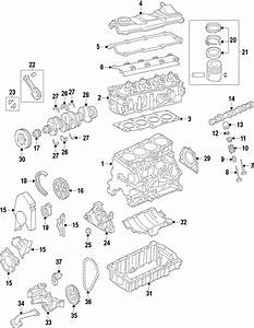 Volkswagen Golf Engine Cylinder Head Gasket  Engine
