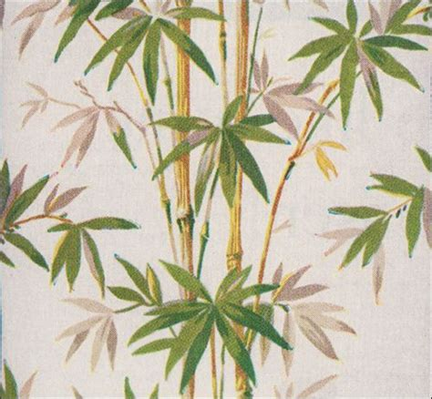 bamboo wallpaper flora foliage  tropical twist