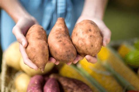 16 Vertus et Bienfaits de la Patate Douce