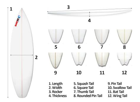 Skimboard Template The Effects Of Surfboard Design In Wave Performance