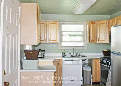 krylon transitions kitchen cabinet paint kit painted cabinets risenmay 9654