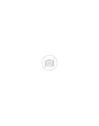 Environmental Cartoon Cartoons Messy Funny Comics Climate