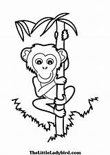 Climbing Climber Clipartmag sketch template
