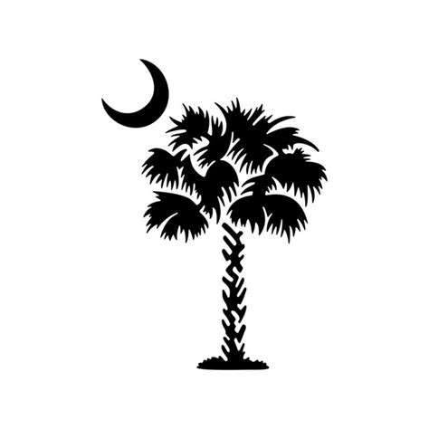 palmetto tree south carolina palm beach moon