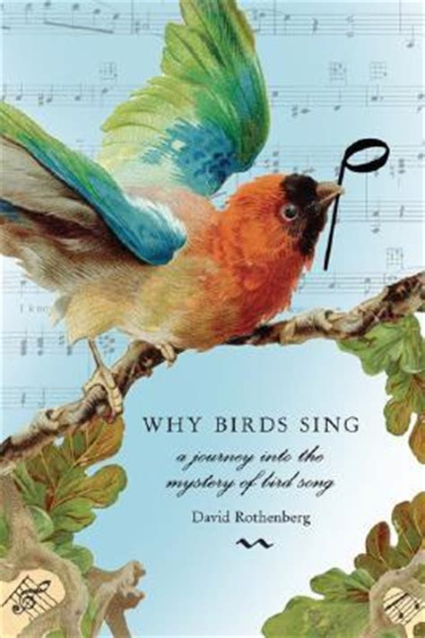 birds sing  journey   mystery  birdsong  david rothenberg reviews discussion