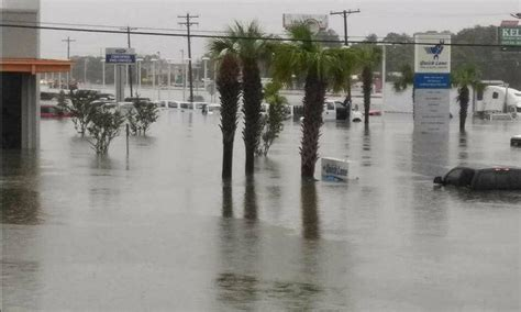texas association head sums   damage
