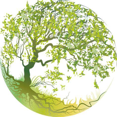 arbre png