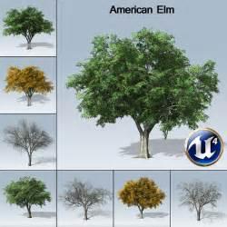 american elm ue4 speedtree store