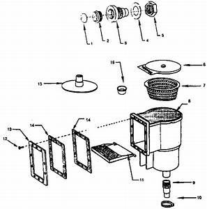 34 Pool Skimmer Parts Diagram