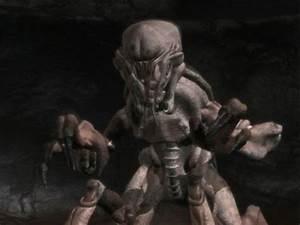 Image - ArachnidZanderForm2.jpg - Starship Troopers Wiki ...