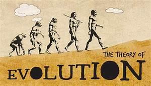 Darwins Theory of Evolution – Biology for Kids   Mocomi