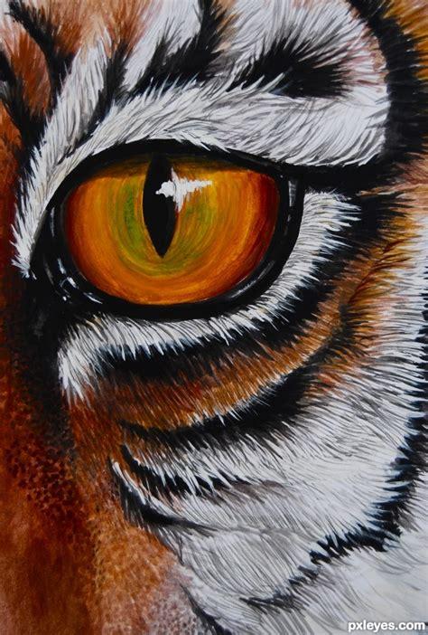 drawing guide  making   eye   tiger pxleyescom