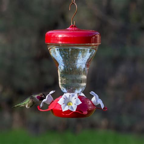 pets hummingbird feeders pet 123tf primrosetop fill push pull 16
