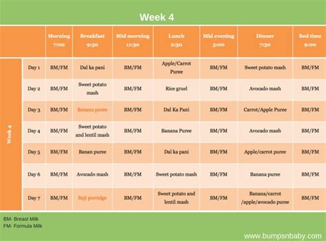6 month old feeding schedule free printable food charts