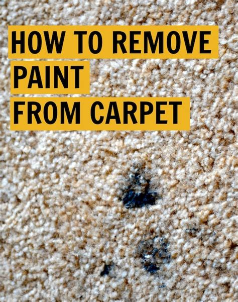 Rachel Schultz How To Remove Paint From Carpet