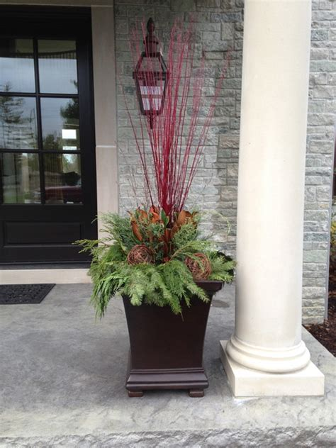 winter container display modern outdoor holiday