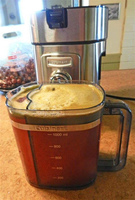 rhubarb juicer juice feed tube pitcher