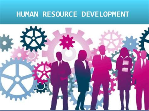 Human Resource Development. Learn Graphic Design Online Tax Lawyer Jobs. Northwestern University Phd Pre Med School. Uv Coating On Business Cards. Dentist In Plantation Florida. Articles On Credit Cards Global Motor Sports. Beauty Schools In Orlando Florida. The Republic Group Insurance. Lawn Care Service Prices Junk Removal Raleigh
