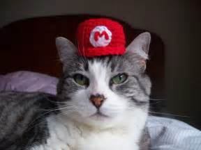 mario cat rue the day 187 it s a me a mario de cat