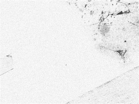 FREE 13+ White Grunge Photoshop Texture Designs in PSD