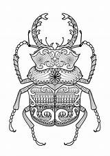 Coloring Pages Zentangle Beetle Adult Mandala Adults Escarabajo Printable Drawing Beetles Bug Google Con Coloriage Patterns Animal Drawings Children Stress sketch template