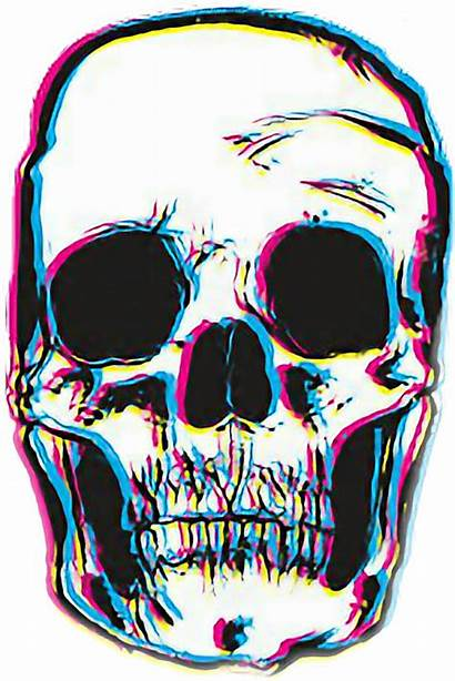 Skull Drawing Transparent Background Clipart Clipartmag