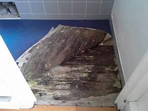 Comment faire un ragreage sur du parquet ancien le for Ragréage sur parquet