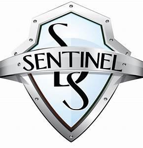 Team Sentinel Gaming Summary DOTABUFF Dota 2 Stats