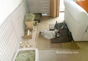 Rabbit accommodation Housing ideas for bunny rabbits