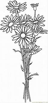 Coloringpages101 sketch template