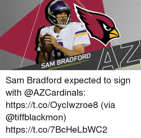 Sam Bradford Memes - sam bradford sam bradford expected to sign with httpstcooyciwzroe8 via httpstco7bchelbwc2 meme