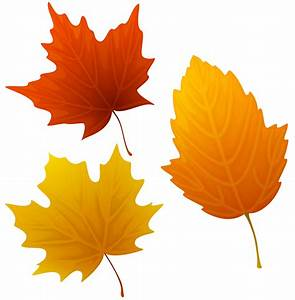 Top 88 Autumn Leaves Clip Art - Free Clipart Image