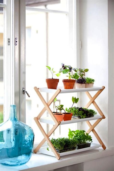 Indoor Window Sill Plants by Cutest Window Sill Plant Stand Everything Plants